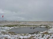 Falklands21