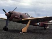 Focke Wolf FW-190